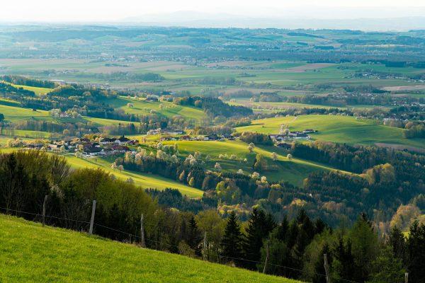Tagestour Mostviertel Panorama-Höhenweg